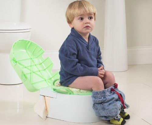 How To Get Your Child Potty Trained In Three Days